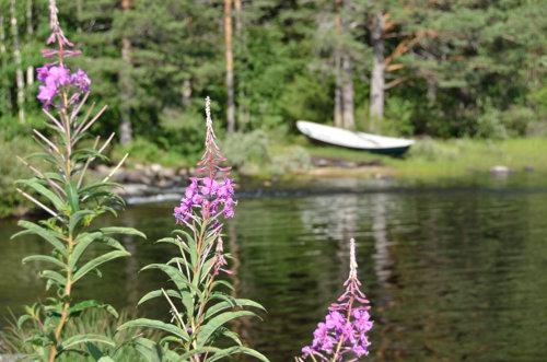 einsames Ruderboot an einem einsamen finnischen See